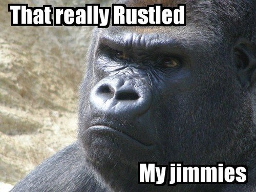 Jimmy Rustles...for some reason my tie for favourite meme either. This and Uncle Dolan