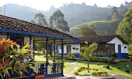 Colombia is full of beans: coffee regions open for tourism