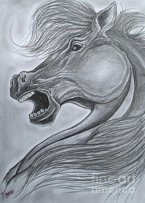 Pencil drawing #drawing