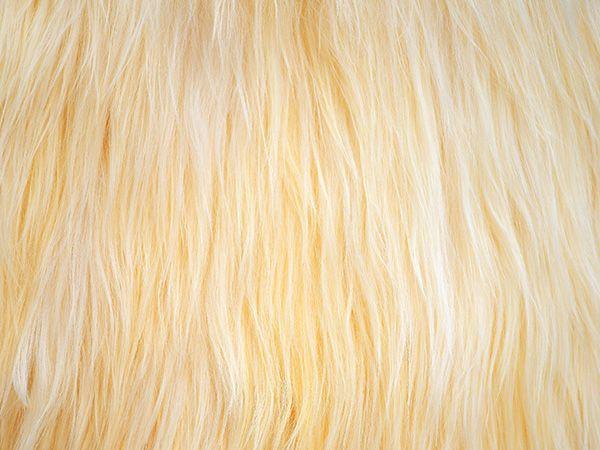 Characteristics of new wool | URBANARA UK