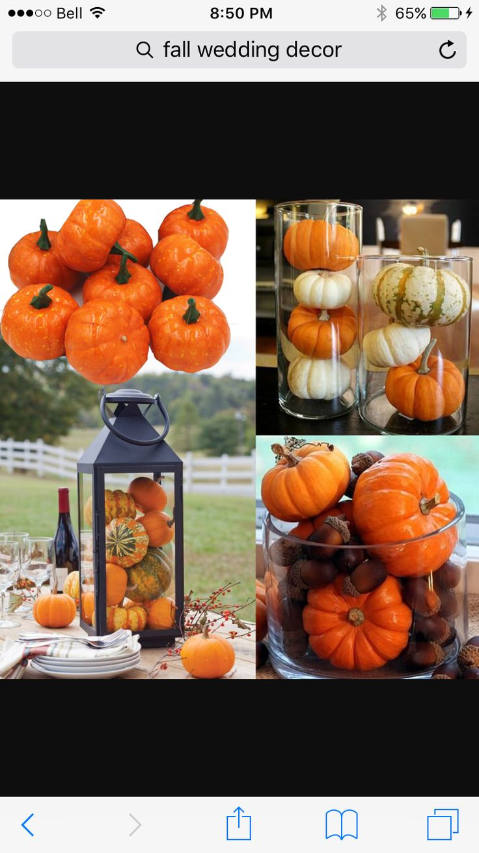 50 Fall Wedding Ideas with Pumpkins