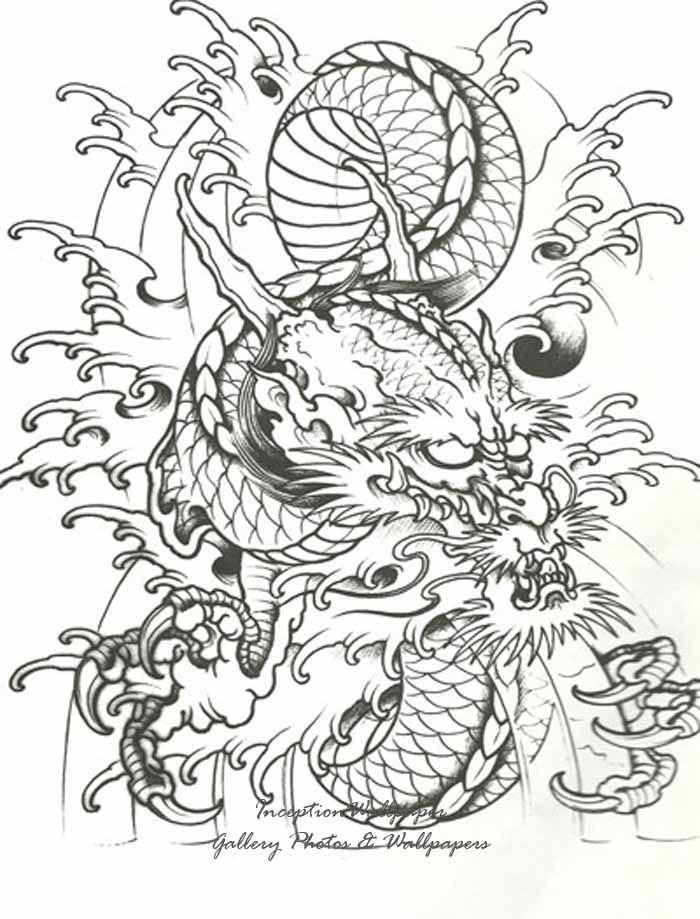 Chinese Dragon Tattoos - Google Search