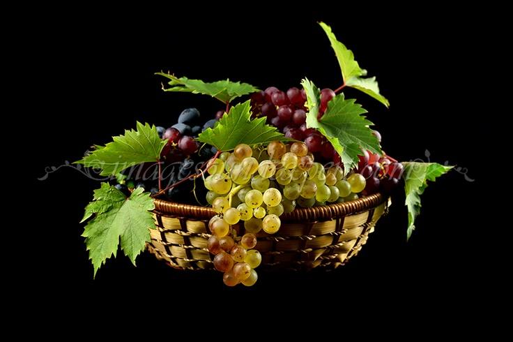 Fotografie produs - fructe de toamna / Product Photo - fruit of autumn / Product Photo - Obst im Herbst / Photo du produit - fruit de l'automne  (struguri, grapes, trauben, raisin)