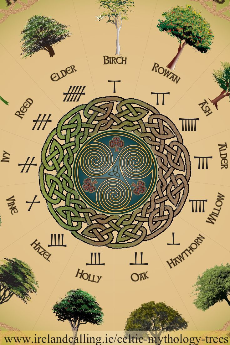The Celtic Tarot Courtney Davis 9780850309201 Amazon: Trees In Celtic Mythology: Trees Were Hugely Significant