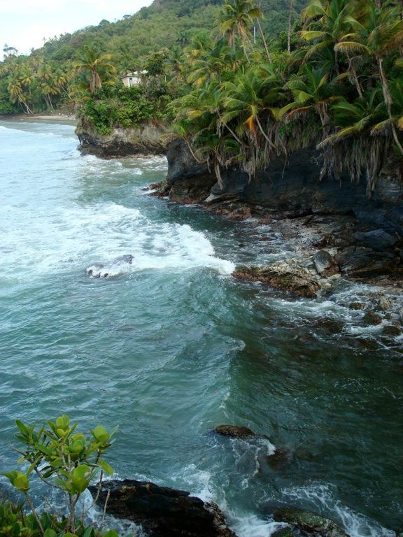 blanchiseusse, trinidad