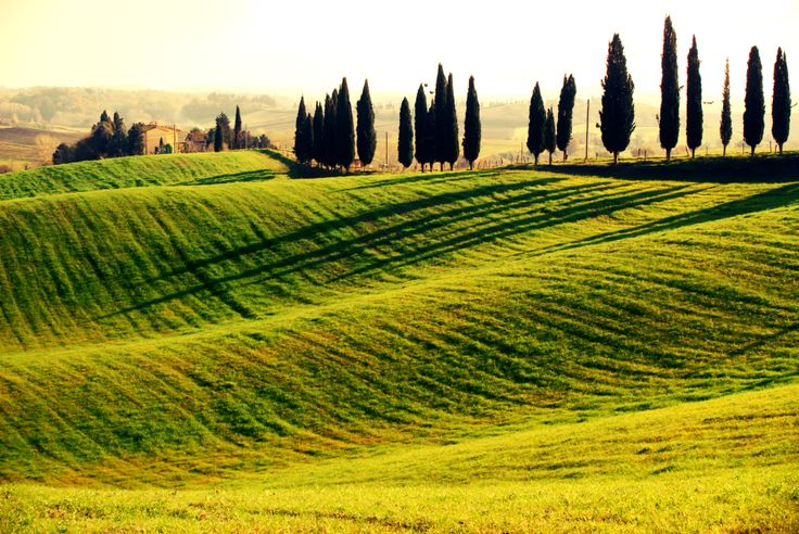 Tuscan countryside. Photo by Luca Di Monte