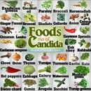 Candida overgrowth? Killing Candida Yeast - stop hormone therapies (candida loves high levels of progesterone), avoid soy / canola oil, take collodial silver / garlic / grapefruit seed extract / cayenne pepper / chamomile / wormwood,  use gray-colored sea salt (no table salt), consume tiny amount extra virgin, cold-pressed coconut oil daily (if you can tolerate, but build up tolerance to take it daily)