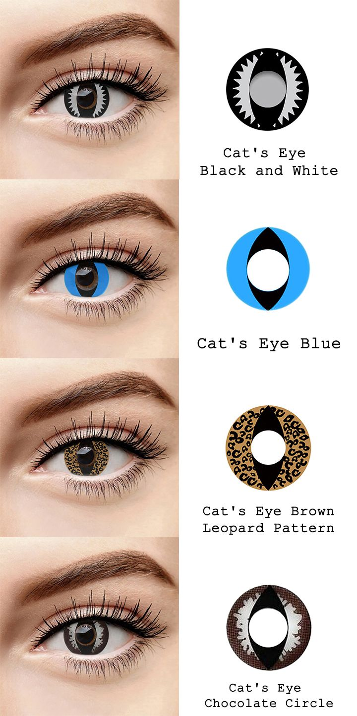 Microeyelenses Com Colored Contact Lenses Online Shop Cat S Eye