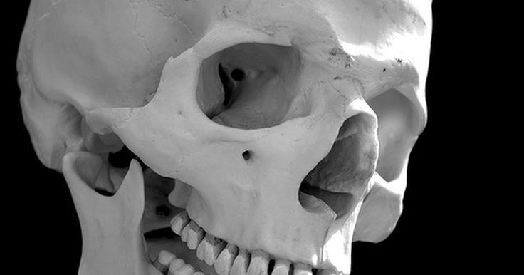 O que causa dores na mandíbula e nos gânglios linfáticos?. Se você estiver sentindo dor nos gânglios linfáticos e na mandíbula, é importante prestar atenção em outros sintomas para determinar a causa da dor. Infelizmente, diversas doenças podem provocar dor na mandíbula e nos nódulos linfáticos.