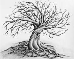 Image result for pencil drawing of a tree with roots