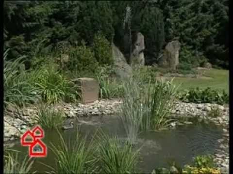 Kerti tó építése