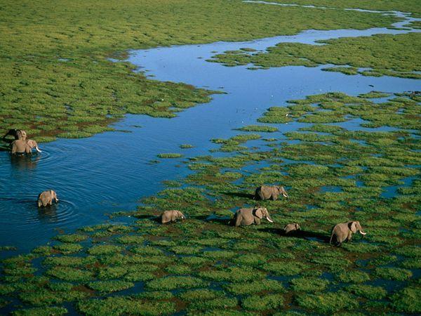Beautiful Kenya