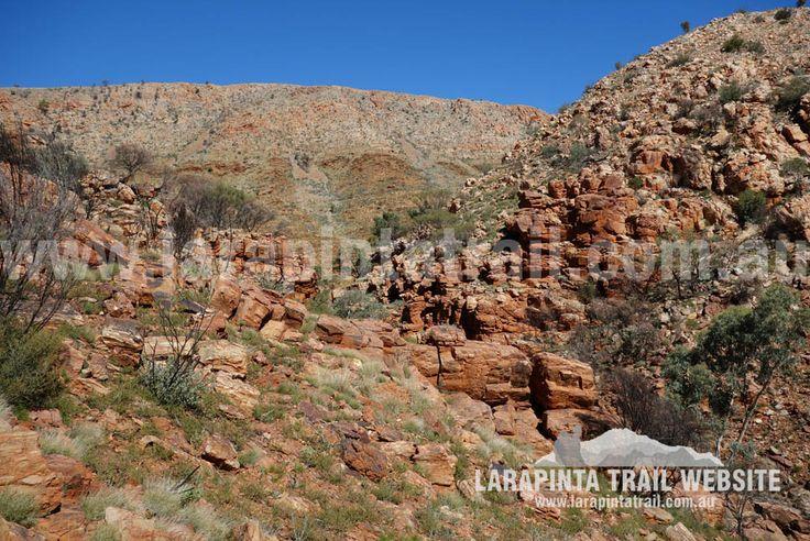 Waterfall Gorge, Section 9.  © Explorers Australia Pty Ltd 2014