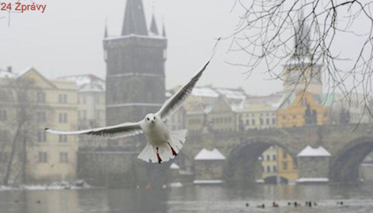 Vytáhněte oteplováky! Teploty v Praze klesnou až na -12 stupňů Celsia