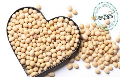 AGRI BEST NCDEX Soybean August Futures Fell On Wednesday posted by heena khan / on july 20, 2017 / no comments    NCDEX Soybean August futures fell on Wednesday due to profit booking by the market participants on good rains in MP and Rajasthan