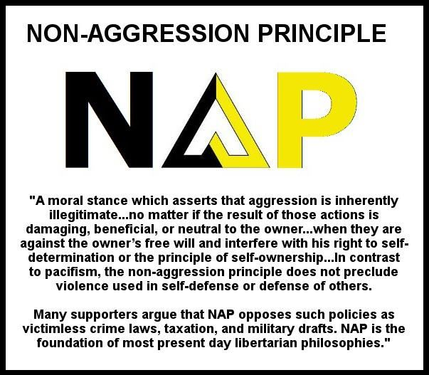 nap / non aggression principle
