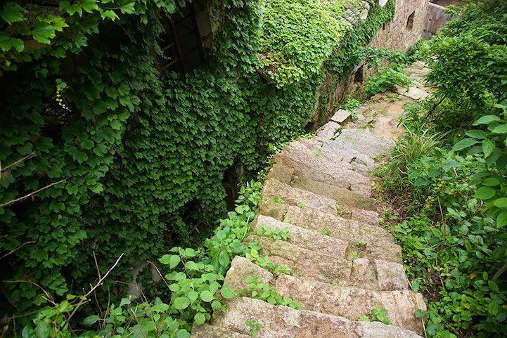 Un village envahi par la nature sur lîle de Goqui  2Tout2Rien