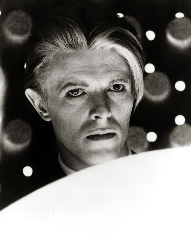 Halloween Jack Bowie David