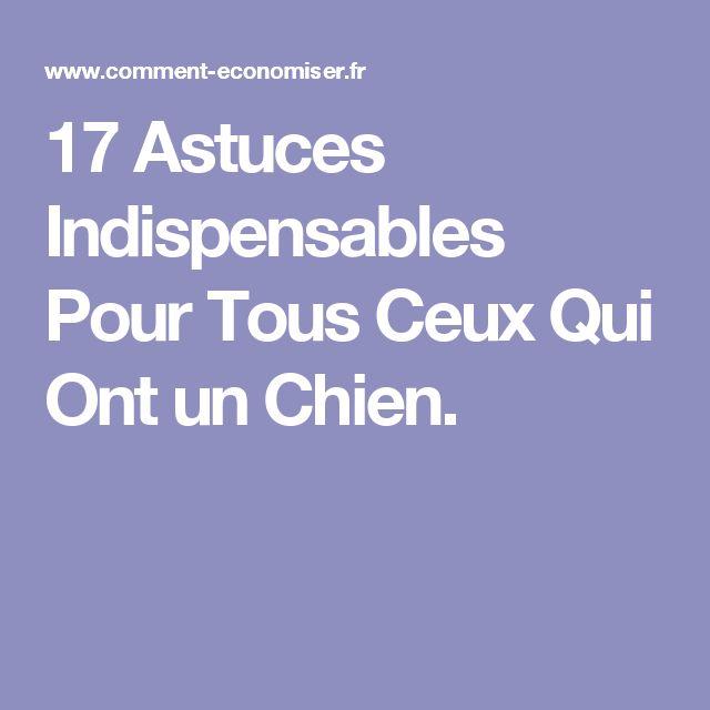 17 Astuces Indispensables Pour Tous Ceux Qui Ont un Chien.
