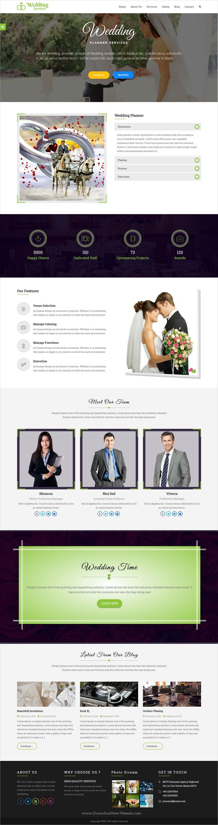 Wedding services is clean and modern design