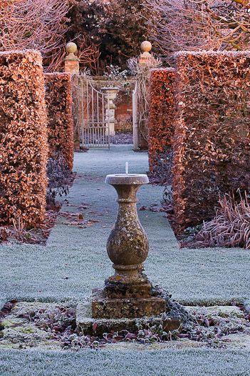 Crispy frosty Novembery beech hedges... A winter garden ~ Clive Nichols Photography