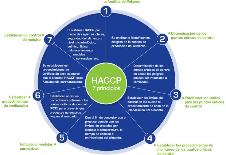 HACCP the seven principles as per the Codex Alimentarius
