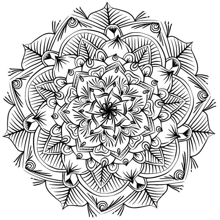 Раскраска для взрослых - ТОП-10 лучших! СТРЕКОЗА, цветы ...