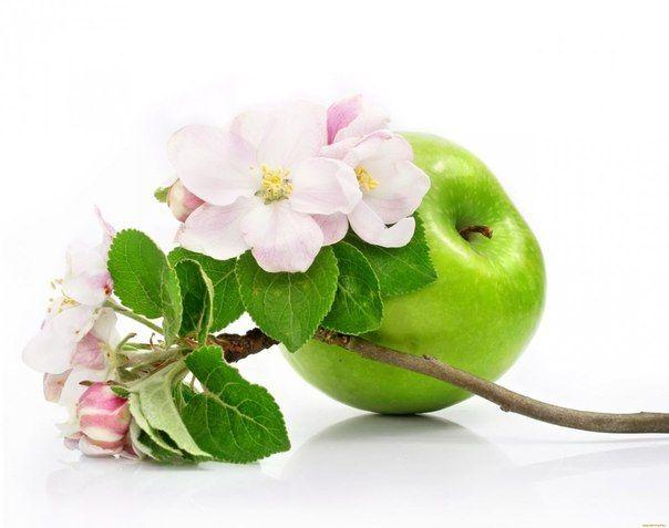 ЯБЛОКО ОТ ПРЫЩЕЙ http://pyhtaru.blogspot.com/2017/05/blog-post_762.html  Вскочил прыщик? Есть хорошее натуральное средство – обычный ломтик яблока. За ночь все пройдет!  Подготовьте свежее яблоко, отрезав всего один ломтик. Поместите в кипящую воду, подождите минут 3-5, чтобы ломтик стал мягче.  Читайте еще: ======================================= НАТУРАЛЬНЫЕ СРЕДСТВА ПРОТИВ ГЕРПЕСА http://pyhtaru.blogspot.ru/2017/05/blog-post_310.html =======================================  Выньте из…