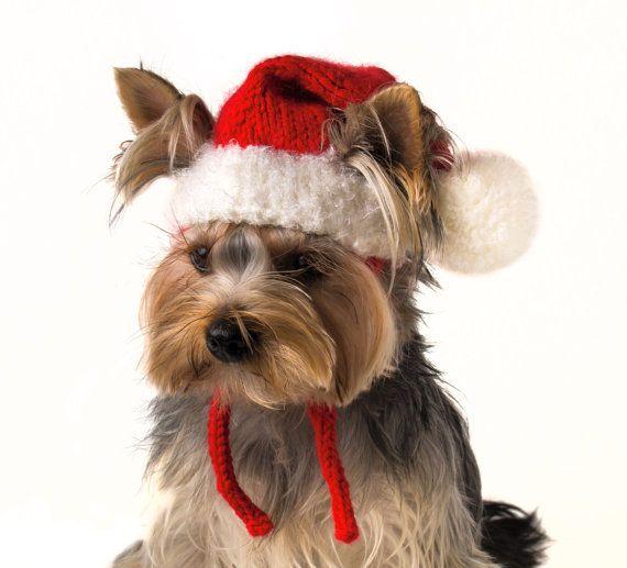 """Sombrero para perro """"Santa"""", trajes de perro Navidad, perro Santa, sombreros de invierno para perros, sombreros de la Navidad para los perros, hecho punto sombrero tejido a mano"""
