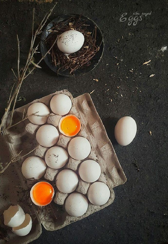 © Siba Fakch El-Sayed..... Eggs :)  by still life photographers