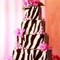 Pink Zebra Diva Party