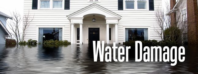 if water has damaged all your business, Then don't worry, Carbonebootcamp provides the best tips and business development ideas for your new business start up. you can also buy CD of the professional business training seminar for your business. To get more info visit website and contact us.