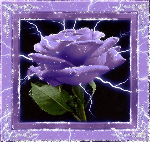 Purple Glitter Rose ~ Glitter Graphics: the community for graphics enthusiasts!