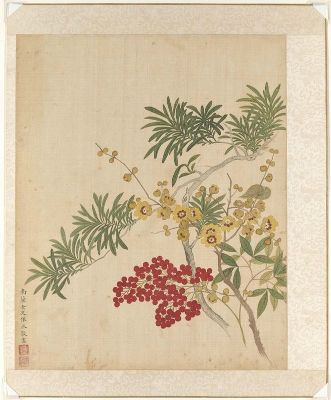 Wax plum, nandina, and Lohan pine, from the flowers of the twelve months: December, Yun Bing (Chinese, 1670 - 1710), 1670-1710, Qing dynasty (1644-1911). Album leaf, Ink and colors on silk. Asian Art Museum, The Avery Brundage Collection, B65D49.l. Photo: © Asian Art Museum.