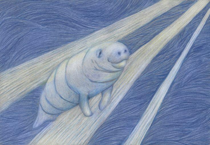 Blog — Eleanor Phillips Illustration