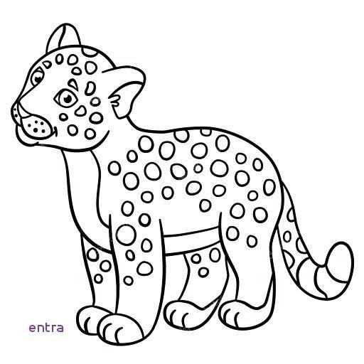 Imagenes De Animales Imprimibles Para Jaguar Para E Jaguar Ideas