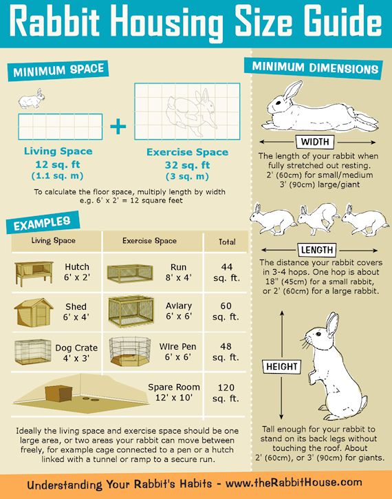 Rabbit Hutch/Cage Size Guide  Rabbits need somewhere to eat, sleep, hide, and go to the toilet,  plus room to hop, run, play, jump, and ...