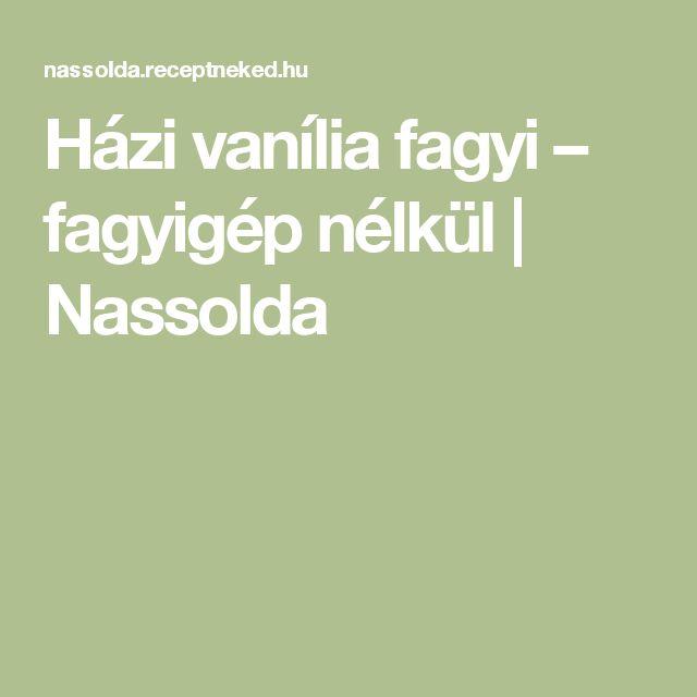Házi vanília fagyi – fagyigép nélkül | Nassolda