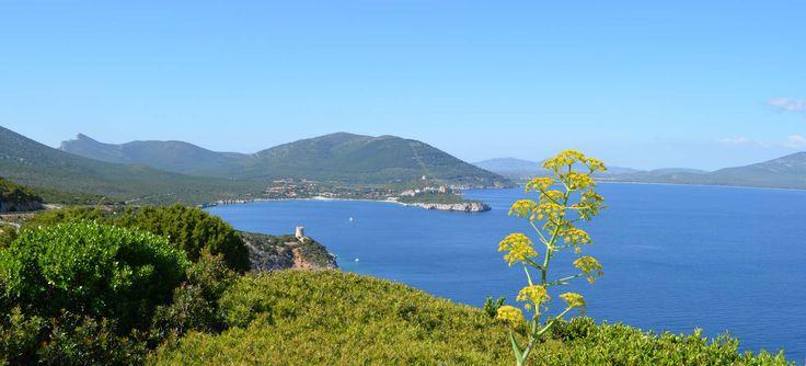 The coast of Alghero - Sardinia