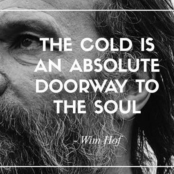 As cold as it gets ❄️ Bala Yoga is bringing you a Wim Hof Method workshop this September! Learn the four pillars of @iceman_hof's revolutionary practice that is giving wellness fanatics everywhere a new way to access their physiology  Yes, there will be ice baths included ❄️☃️Details on the site ➡️ www.balayoga.com/events ▪️Workshop led by @bradbuckendorf.
