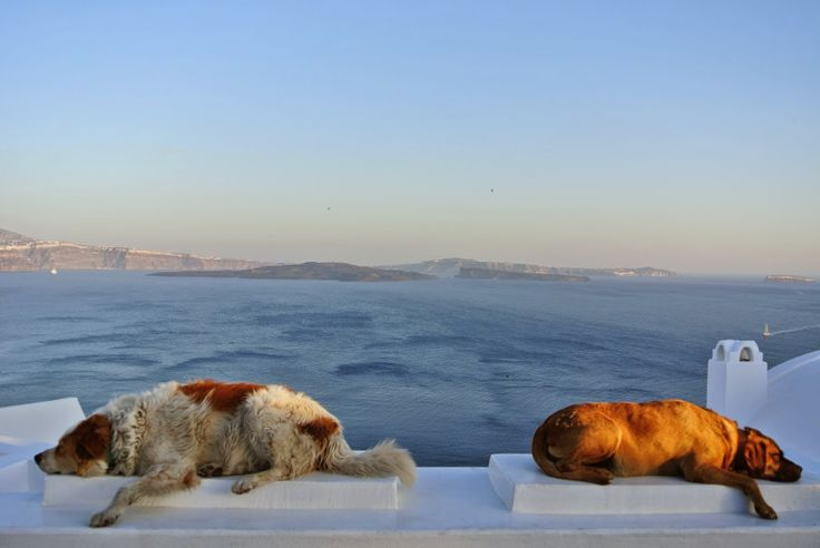 Santorini, Greece (photo by: Anastasia Dask) http://an-if.blogspot.gr/2014/06/blog-post.html
