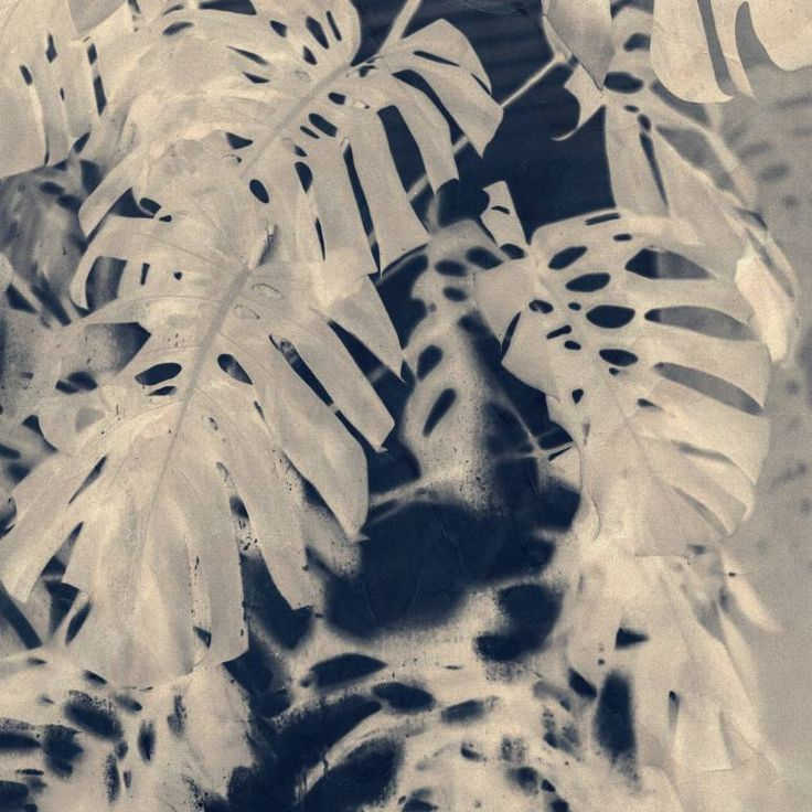 "Saatchi Art Artist Johann Darcel; Photography, ""Cyanotype Monstera - Limited Edition 1 of 3"" #art"