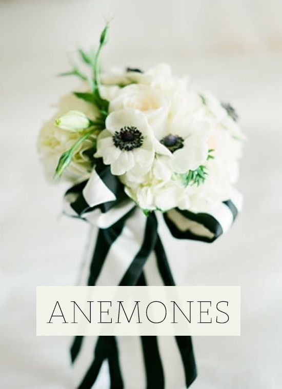 17 best ideas about white anemone on pinterest anemone bouquet anemones and anemone flower - Flowers good luck bridal bouquet ...
