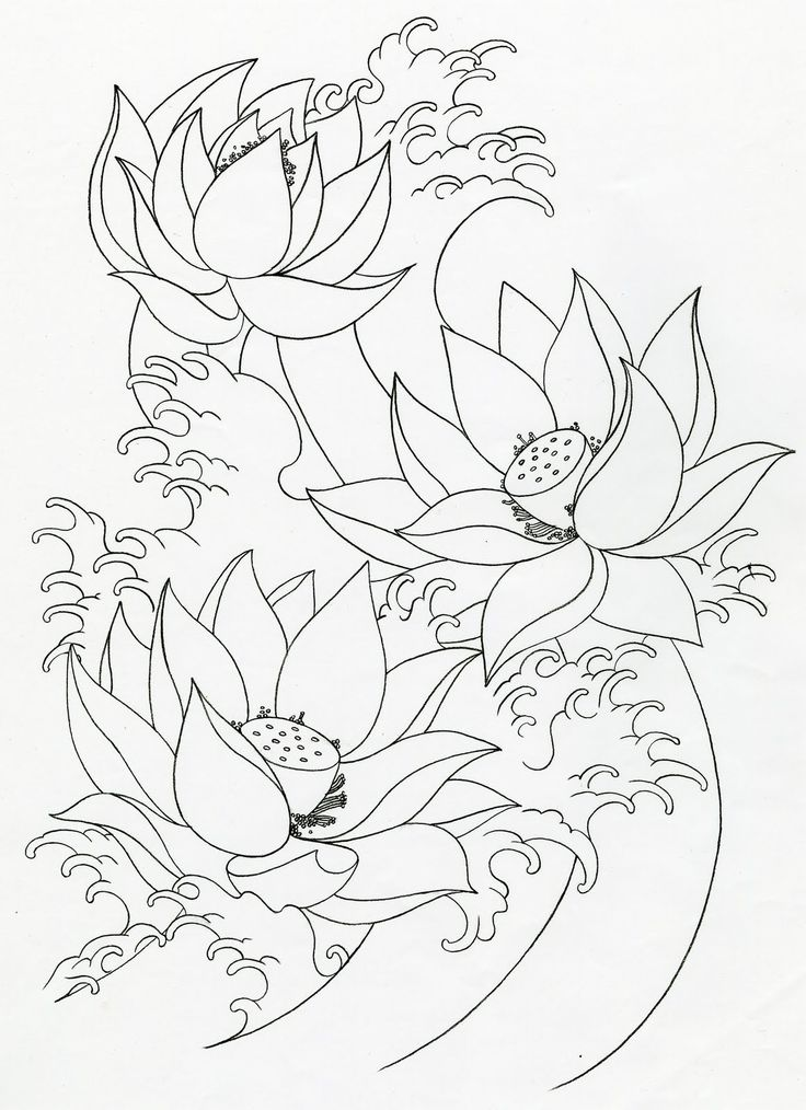 lotus flower drawings for tattoos | Mike's TATTOO design ...
