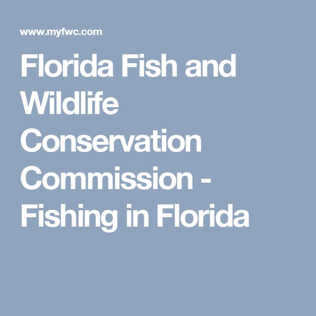10 Best Fwc In Print Images On Pinterest Florida Fish
