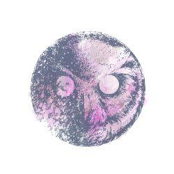 Penjaga malam (bukan satpam). Idenya adalah menggabungkan bentuk bulan dengan bentuk kepala burung hantu. diberi judul Night Watcher karena burung hantu adalah pemburu yang terjaga pada malam hari mengawasi mangsanya. #art #design #digitalart #owl #burung #night #watercolourstyle #burunghantu #birds #moon #Kaos #Desain #Baju #Design #TShirt #Tees #Rupawa
