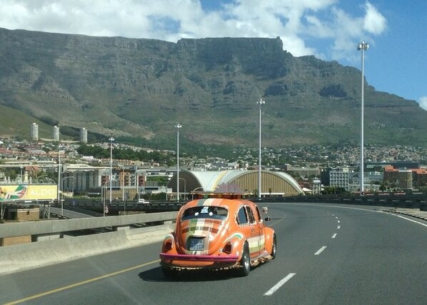 The Bangra Bug caught in action in our beautiful city Cape Town....