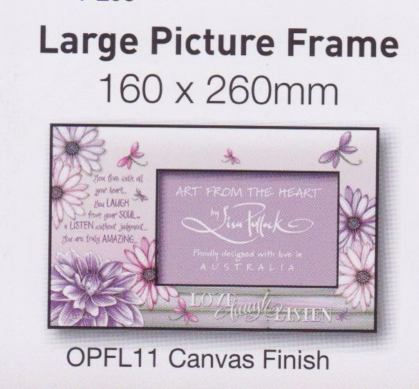 Large picture frame - $25 + $6.95 post