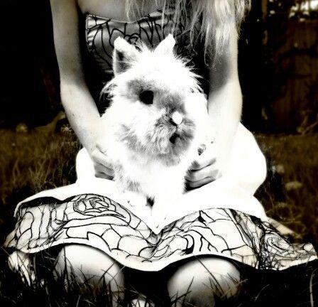 Alice in wonderland inspired piece