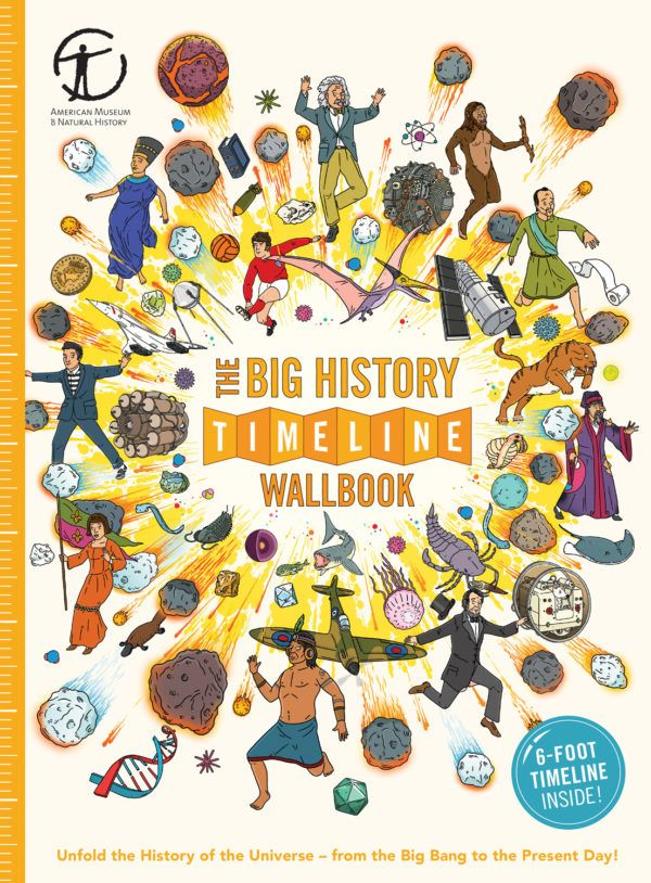 The Big History Timeline Wallbook (What on Earth) Depicts millions of years  of evolution 2ebfad96d7da6